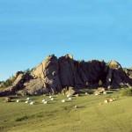 Nomadische Lebensformen in der Mongolei